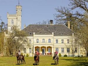Reiturlaub für Erwachsene im Schloss Ribbekardtnahe